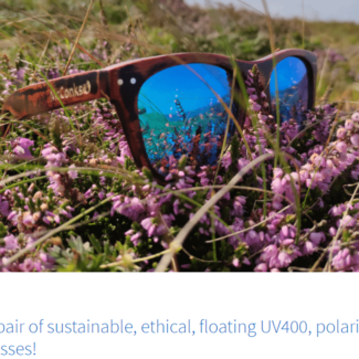 McConks SUP Polarised wooden sunglasses