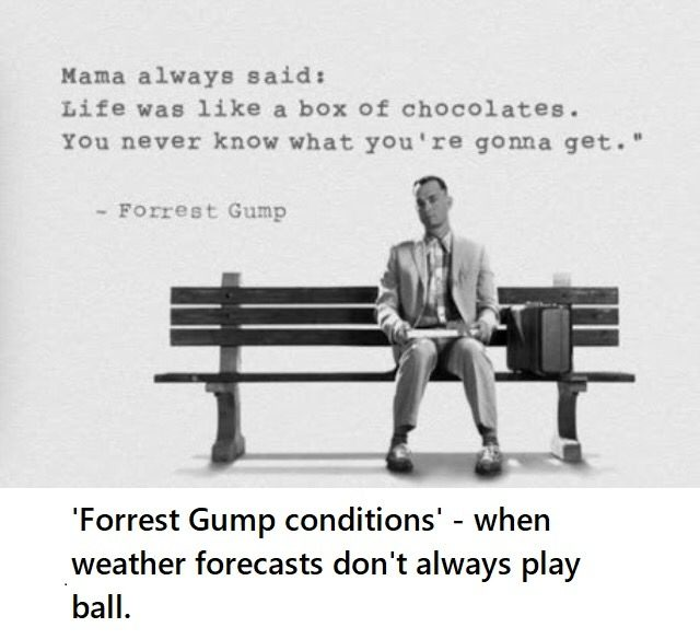 'Forrest Gump conditions' – when weather forecasts don't always play ball.